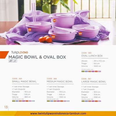 Magic Bowl & Oval Box Twin Tulipware   Tulip Living