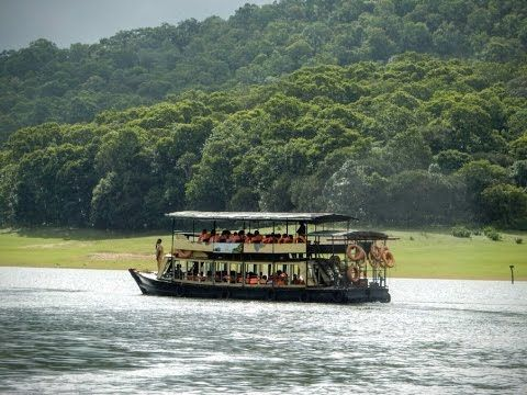 Periyar Tiger Reserve, Thekkady, is an example of nature's bounty with great scenic charm, rich bio diversity and providing veritable visitor satisfaction. Periyar is one of the 48 tiger reserves in India. Zealously guarded and efficiently managed reserve is a repository of rare, endemic and endangered flora and fauna and forms the major watershed of two important rivers of Kerala, the Periyar and Pamba.