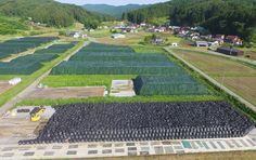 Radioactive waste contained in thousands of black plastic bags are placed in rice paddies in the village of Katsurao, Fukushima Prefecture, where an evacuation advisory was lifted for most of the village. This is the first time that an evacuation advisory has been lifted for an area tainted with relatively high levels of radiation with annual doses projected at between more than 20 millisieverts and less than 50 millisieverts. The government allows 1,347 people in 418 households to return.