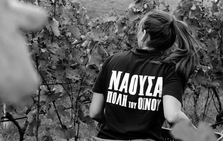 Νάουσα, η πόλη του Οίνου 2015 (11-13/12) - http://parallaximag.gr/agenda/events/naousa-poli-tou-inou-2015-11-1312/