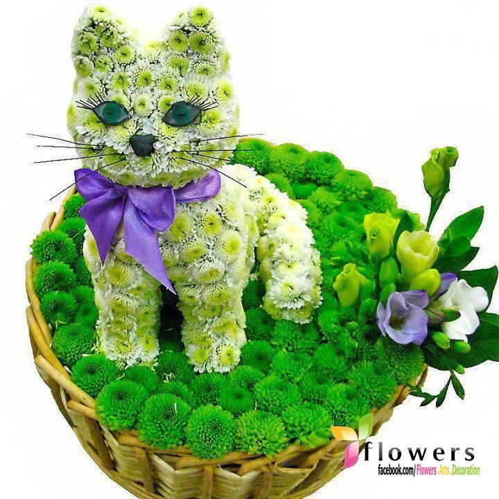 Best 7 cat dog Floral arrangements images on Pinterest | Floral ...