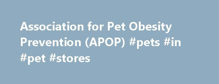Association for Pet Obesity Prevention (APOP) #pets #in #pet #stores http://pet.remmont.com/association-for-pet-obesity-prevention-apop-pets-in-pet-stores/  Daily Caloric Needs for Average Indoor Pets: Cats 10 lbs. 180 to 200 calories; Dogs 10 lbs. 200 to 275 calories; 20 lbs. 325 to 400 calories; 50 lbs. 700 to 900 calories; Daily Caloric Needs for. Weight Check How to Tell if Your Pet is a Healthy Weight Ribs are easily felt Tucked abdomen—no sagging stomach Waist when viewed from above…