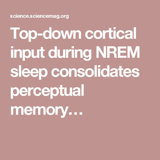 Top-down cortical input during NREM sleep consolidates perceptual memory…