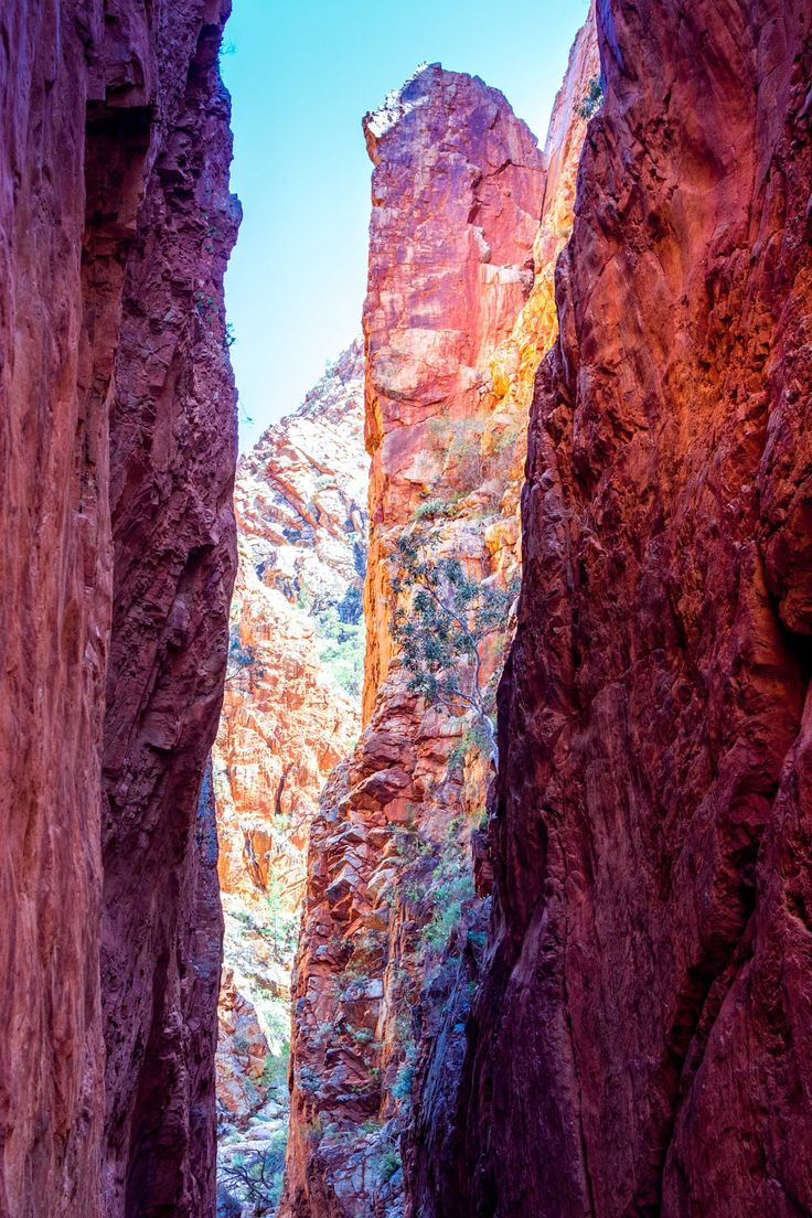 Standley Chasm in Northern Territory AU - null