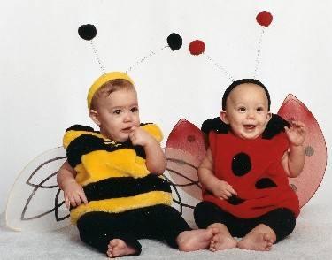 BumbleBee & Ladybug Twin Costume