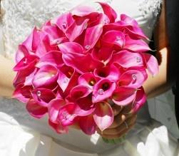 Gorgeous: Pink Flowers, Flowers Fields, Bridal Bouquets, Calla Lilies, Dark Pink Wedding, Wedding Flowers, Pretty Flowers, Hot Pink, Pink Bouquet