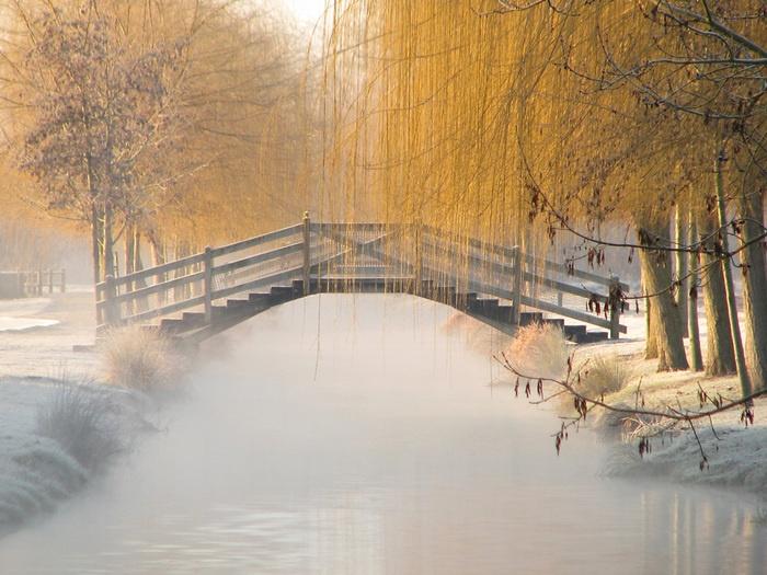 J'♥ la Douceur du givre. Au soleil levant , Givre et légère Brume  Lac de Frace (Aigrefeuille d'Aunis)  situé a 20 km de La Rochelle   Charente maritime