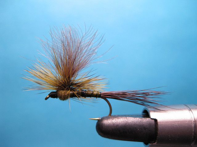 Green Drake Parachute fly tying video   The Caddis Fly: Oregon Fly Fishing Blog