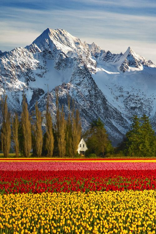 Skagit County, Washington