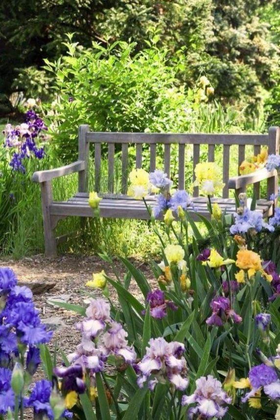30 Entspannende Ideen Fur Blumen Und Pflanzen Zum Entspannen In Ihrem Garten Mit Bildern Blumengarten Design Blumen Anbauen