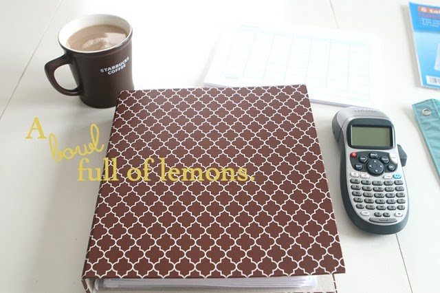 This is a great Home Management Binder! Love the organization!