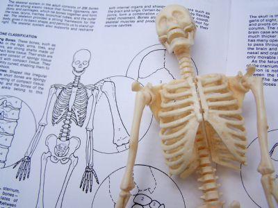 Peligros y esfuerzos laborales.- Esfuerzo físico y postural. Instituto Sindical de Trabajo, Ambiente y Salud