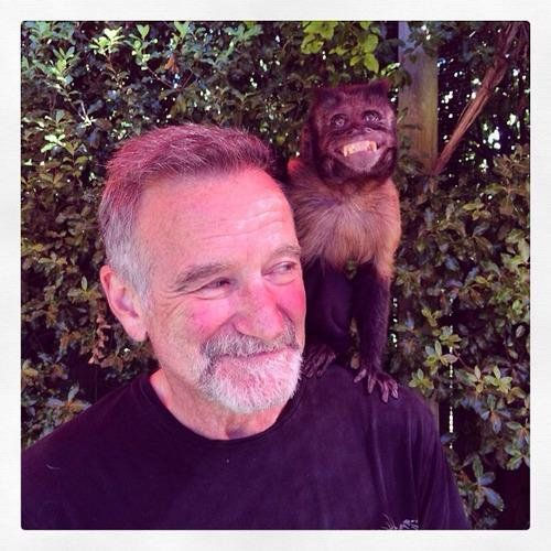 History in Pictures @HistoryFlick  The last photo of Robin Williams.