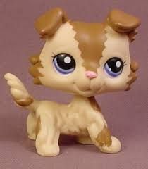 I'm looking for this LPS collie r any LPS collie, they are VERY over priced on eBay and was hoping if anyone had a collie for sale at a better price.
