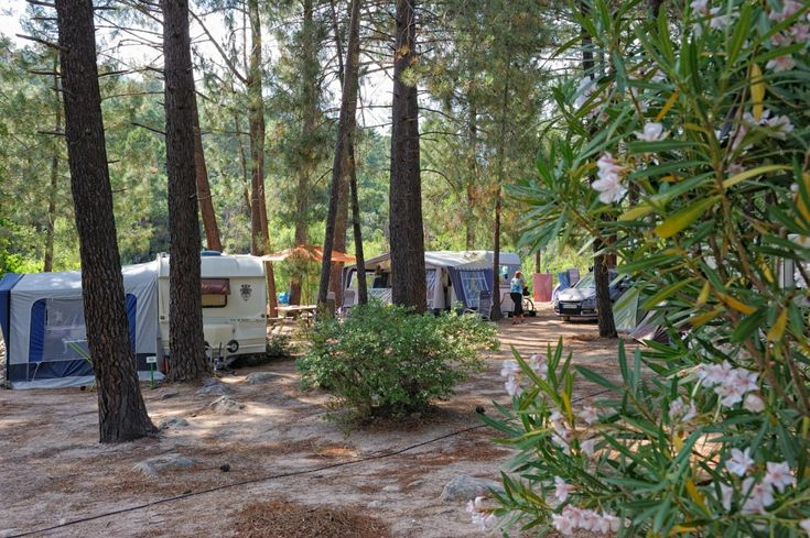Camping 3 étoiles U Mulinacciu - Emplacement camping - Porto Vecchio