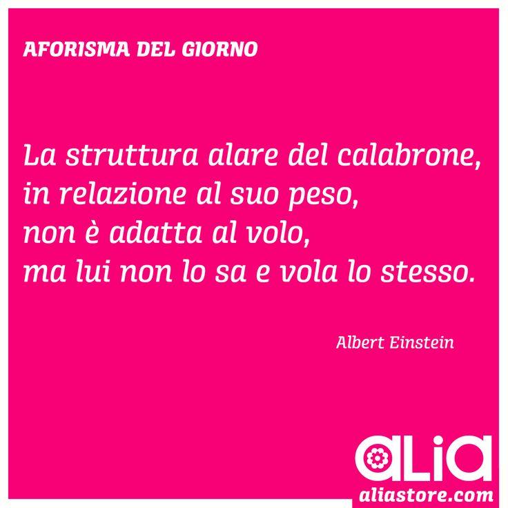"""""""La struttura alare del calabrone, in relazione al suo peso, non è adatta al volo, ma lei non lo sa e vola lo stesso.""""  Albert Einstein"""