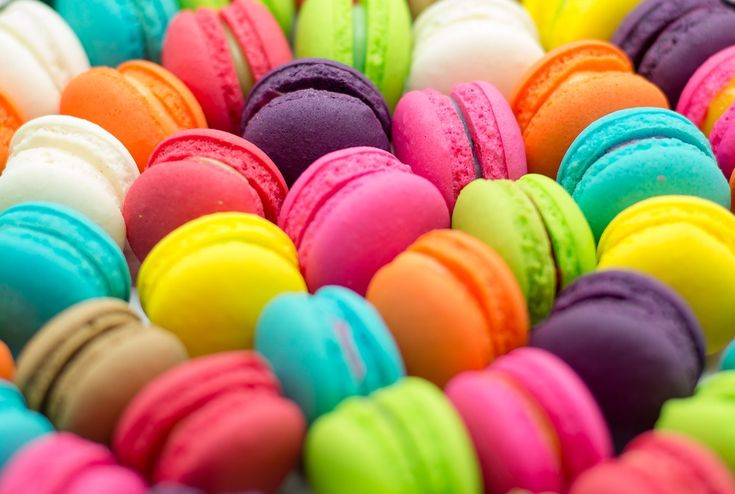 The Great Macaron Experiment: Prologue