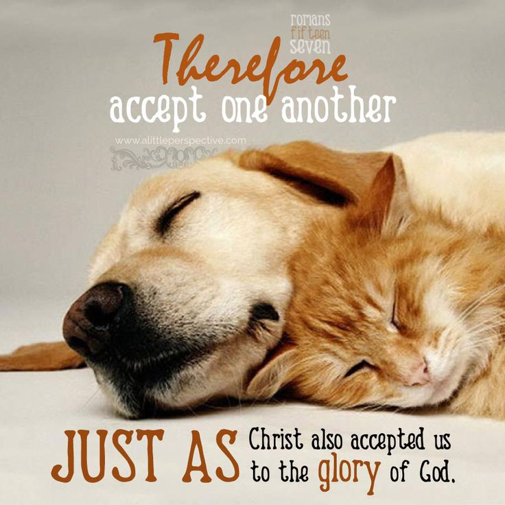 Therefore, accept one another, just as Christ also accepted us to the glory of God. Rom 15:7. <3