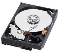 http://huicun.mybigcommerce.com/hp-625609-b21-hp-1tb-3g-sata-7-2k-rpm-sff-2-5-inch-hot-plug-midline-1yr-warranty-hard-drive-hdd/