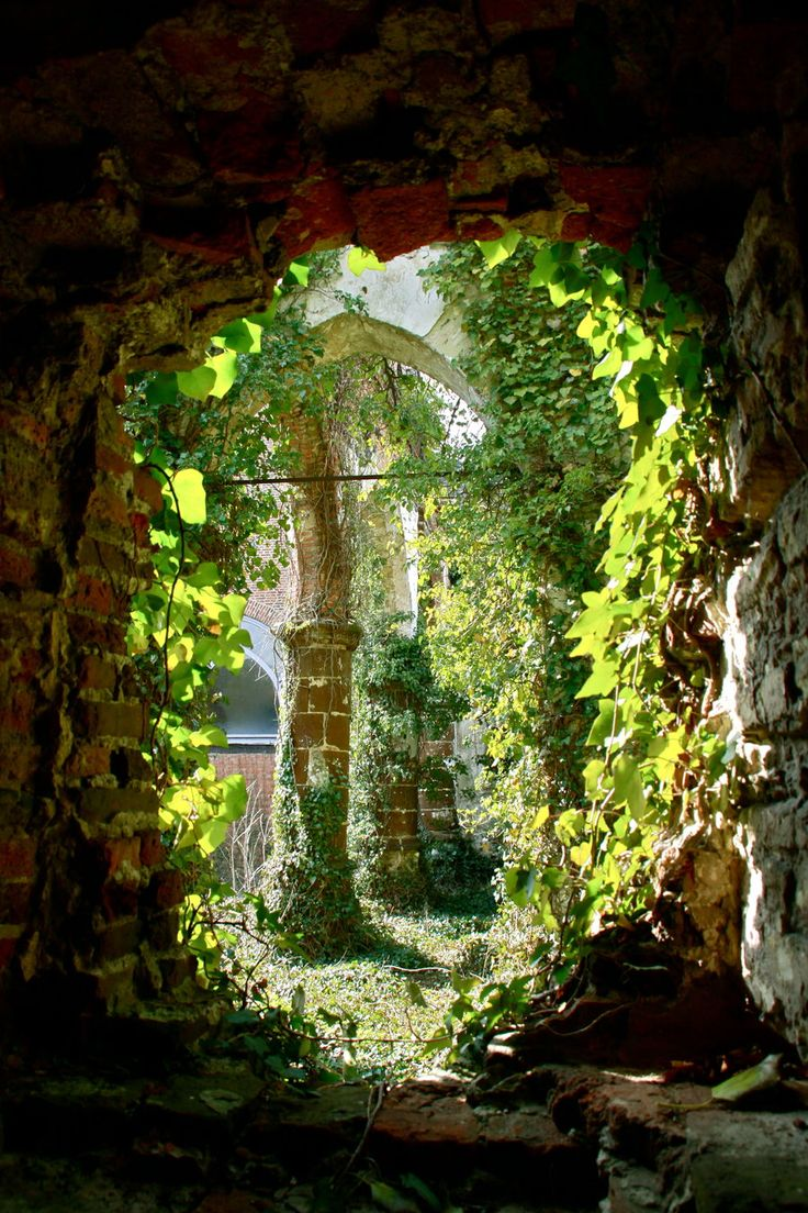 Secret Garden: 106 Best Images About Secret Gardens On Pinterest