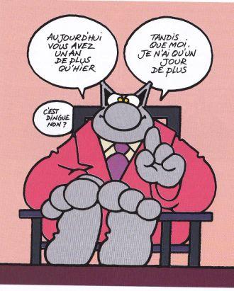 le chat 0009