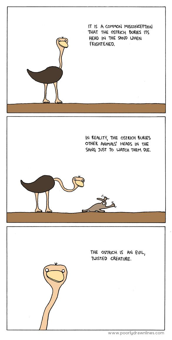 The ostrich is an evil, twisted creature.