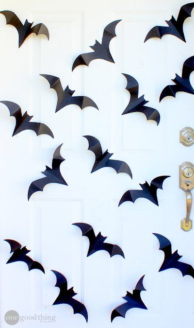 Bats and Spiders