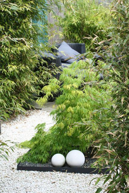 Purple Area: Japansk trädgård i Limhamn