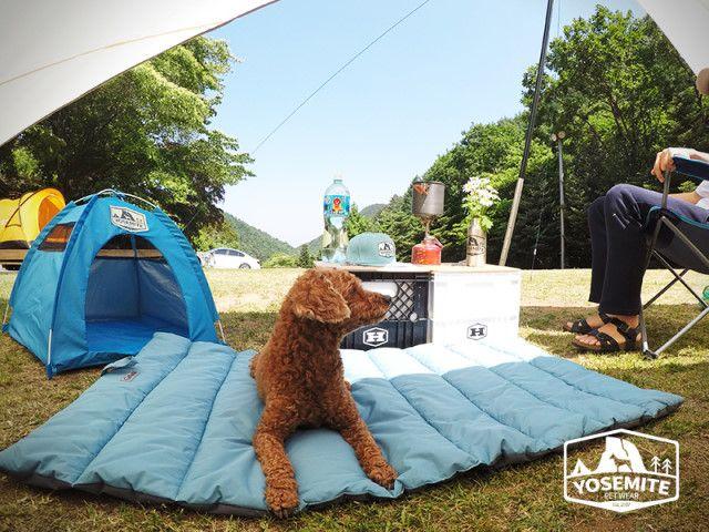 애견 동반 캠핑 필수품 편하게 휴대하고 펼쳐서 사용하는 야외용 애견매트