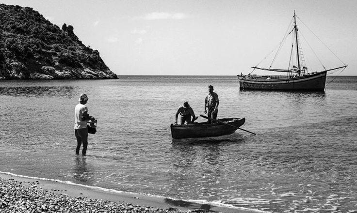 ROBERT MC CABE ΣΚΟΠΕΛΟΣ -1963 - ΨΑΡΑΔΕΣ