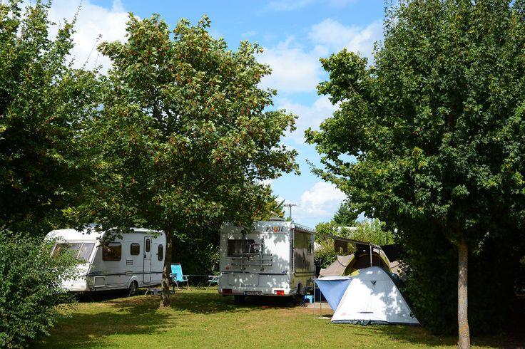 goed gewaardeerde camping op doorreis naar Landes, met meer en zwembad. Futuroscope vlakbij - Camping du Lac de Saint-Cyr