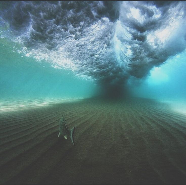Living under the waves