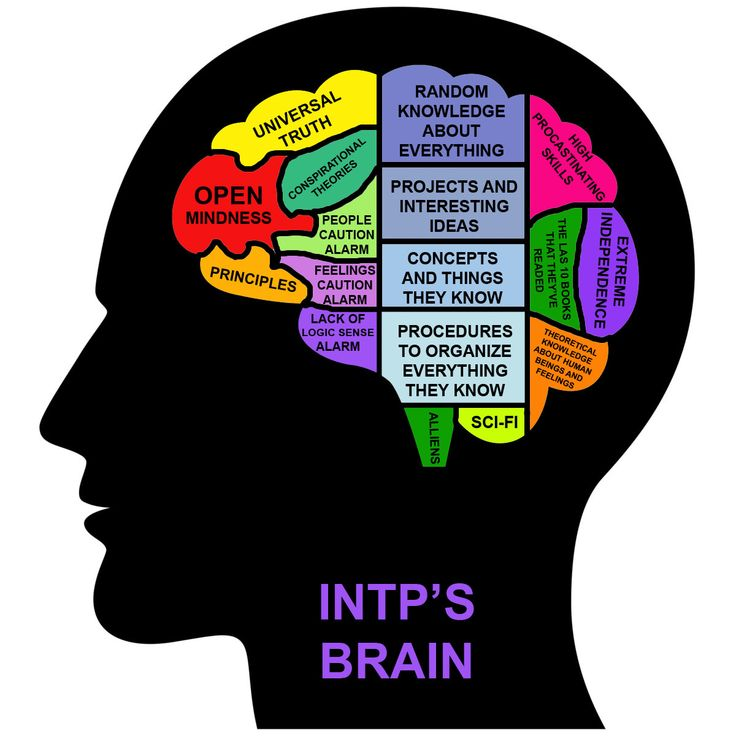 INTP's brain. Nice graphic... except for the typos. Gah!