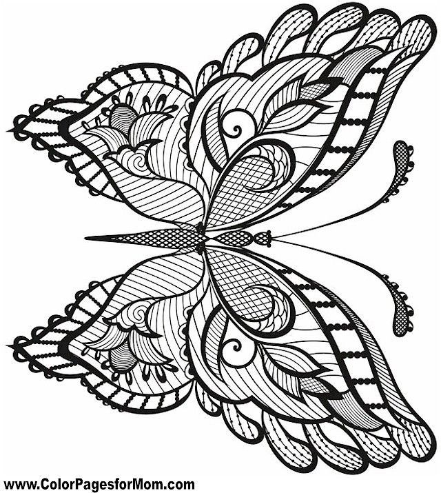- Butterfly Coloring Page 38 Butterflies To Color Pinterest Kids Pages  Butterfly Coloring Page, Coloring Pages, Coloring Books
