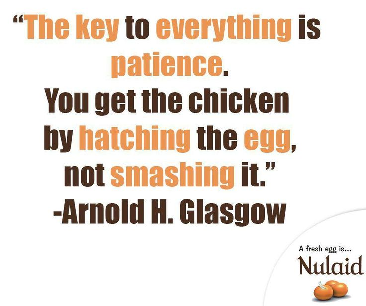 """""""The key to everything is patience. You get the chicken by hatching the egg not smashing it."""" - Arnold H. Glasgow #SundayMotivation #Nulaid"""