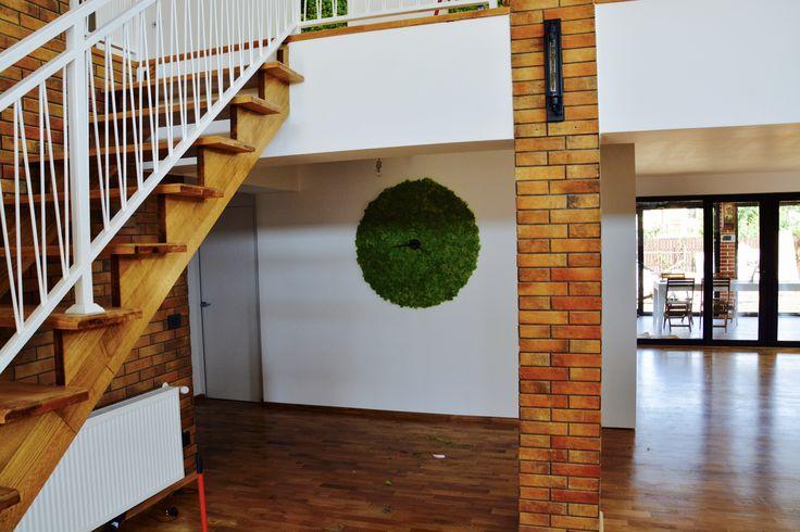 Wall clock made with green moss. | Ceas de perete, verde, acoperit de muschi.