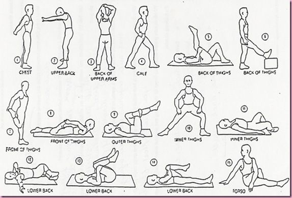 Daily Stretches - i use these to cool down after a workout.this all r very much helpful to maintain a healthy life
