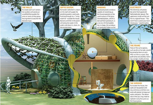 Architects Mitchell Joachim and Javier Arbona, and environmental engineer Lara Greden have designed a house that will grow from a few seedlings into a two story, water recycling, energy efficient home.