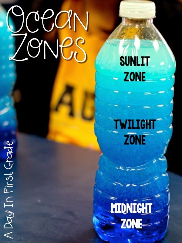 Ocean Zone discovery bottles- fill the bottle with 1/4 water (with blue food coloring) and 3/4 vegetable oil. After the students shake them up, the will notice three distinct areas in their bottle as the oil and water settle. {This is perfect for teaching the zones in the ocean!}