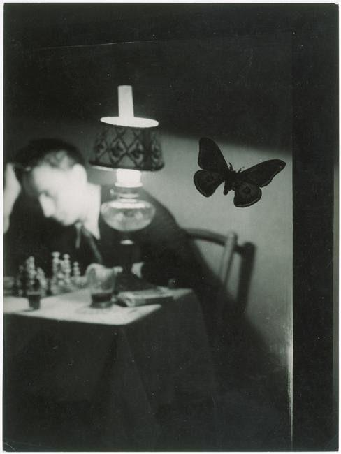 BrassaïPhotos, Fashion Dresses, Surrealist Photographers, Art, Butterflies Fly, Butterflies Collector, Brassaï 18991984, Photographers Eye, Photography Inspiration