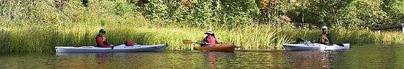 Michigan Canoe and Kayak Rentals | Pine River Paddlesports