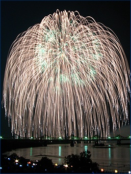 I love the fireworks that looks like a weeping willow tree  (nice picture//weird site)