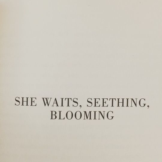 She waits, seething, blooming ...   Hoping to do it well; on earth we are imperfect... I must bite my tongue; for how long and around whom? Oh, yes... Pardon me; my absurdity