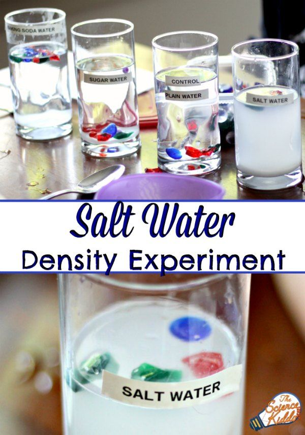 This super easy salt water experiment is the perfect science activity to teach…