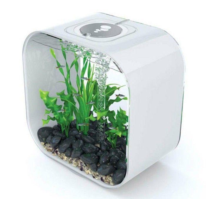 die besten 25 kleines aquarium ideen auf pinterest kinder aquarium aquarium handwerk und. Black Bedroom Furniture Sets. Home Design Ideas