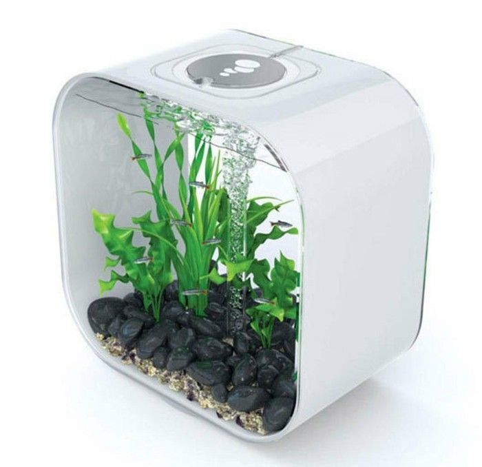 25 best ideas about kleines aquarium auf pinterest kinder aquarium unterwasser kunst und. Black Bedroom Furniture Sets. Home Design Ideas