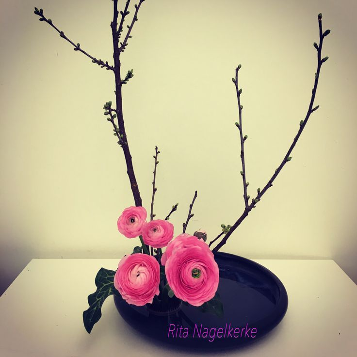 Ikebana var. Upright style moribana