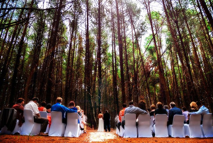 New post (Use South Africa's perfect wedding weather with an outdoor celebration) has been published on Warren James – Wedding Photographers Gauteng. View the post by clicking here: http://bit.ly/1dHK2BG