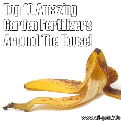 Please Share This Page: If you are a first-time visitor, please be sure to like us on Facebook and receive our exciting and innovative tutorials and info! Photo – © Andrzej Tokarski – Fotolia.com We found a great article about items around the house you can use as natural garden fertilizers! The link is after [...]