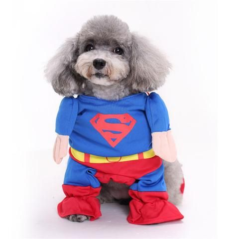SuperMan Halloween Costume for Dogs and Cats | FREE SHIPPING From www.LivelyPetsOnline.com ! Check it out in the Halloween Superstore!